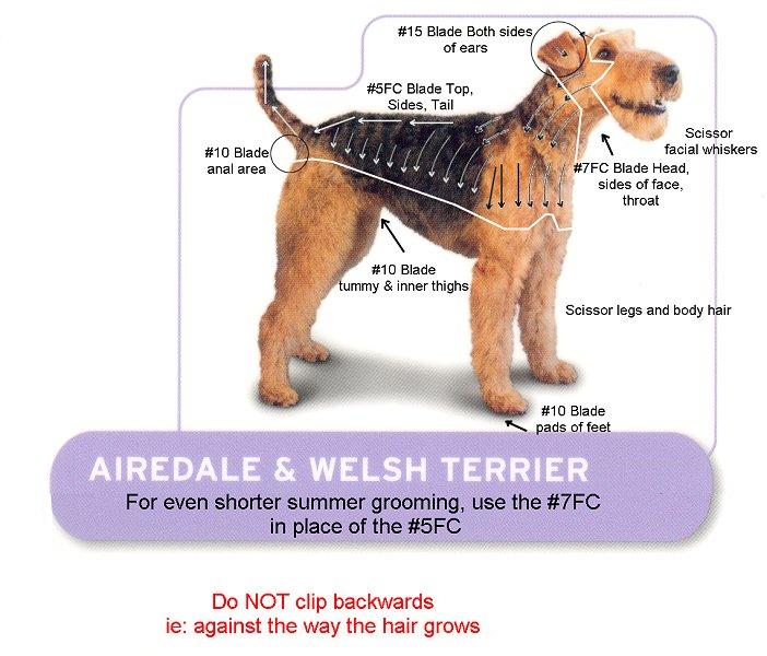 Dog Grooming Kits And Supplies