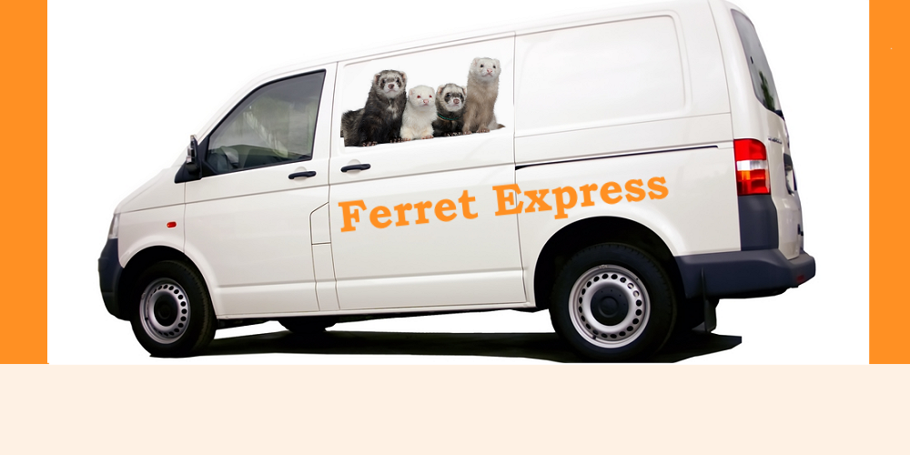 we deliver ferrets products on time