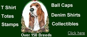 Basset Hound t shirts for sale