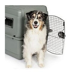 Sky Kennel Airline Travel Crate