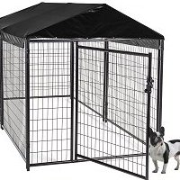 outdoor dog kennel fence
