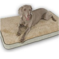Orthopedic Dog Beds, Additional Presentation Information Available, Click to View