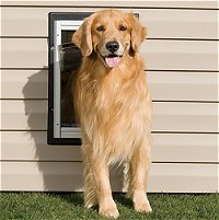 Wall Entry Dog Doors, Additional Presentation Information Available, Click to View