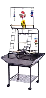Parrot Play Stands