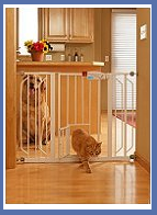 Dog Gates on Sale