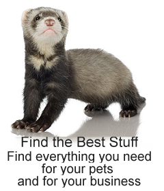 Find the Best Pet Stuff Here